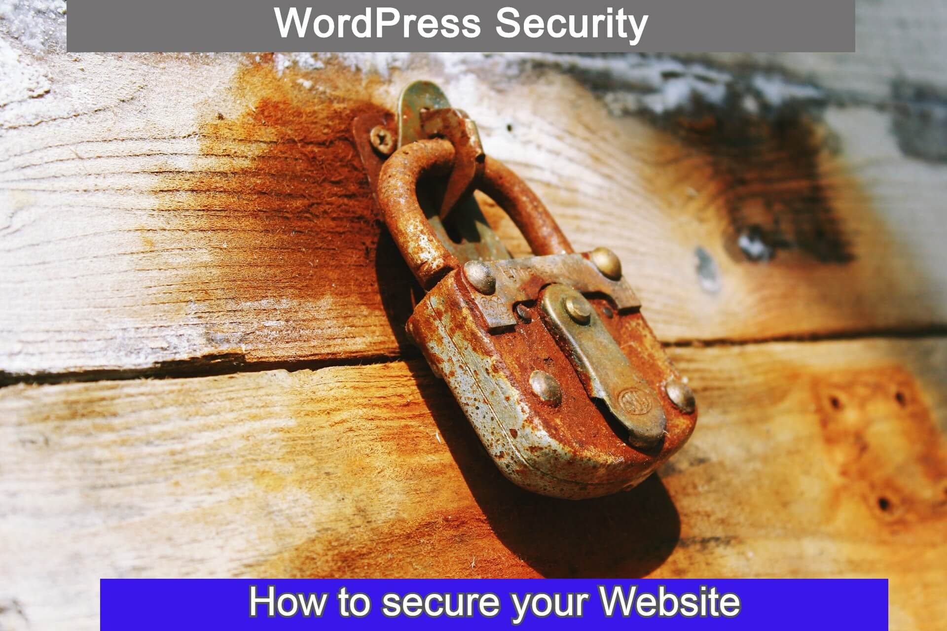 How to secure your Wordpress Website