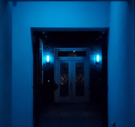 Decoration in bluish light
