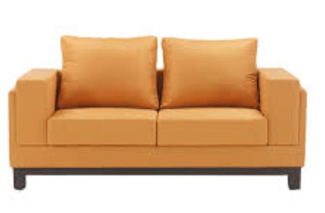 The Loveseat Sofa